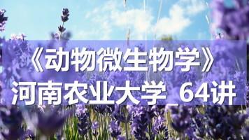K7110_《动物微生物学》_河南农业大学_64讲