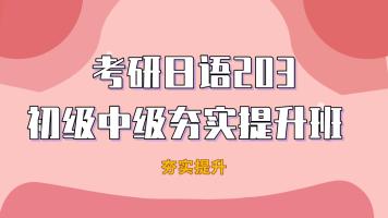 2022年考研日语203初级中级夯实提升班