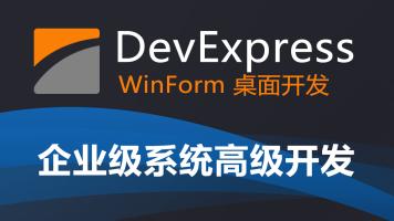 DevExpress WinForm 企业系统高级进阶开发