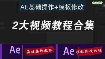 AE视频教程/AE模板使用教程After Effects修改实例模板替换自学