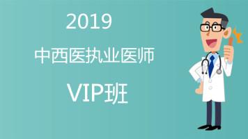 【杏海教育】2019中西医执业医师VIP班