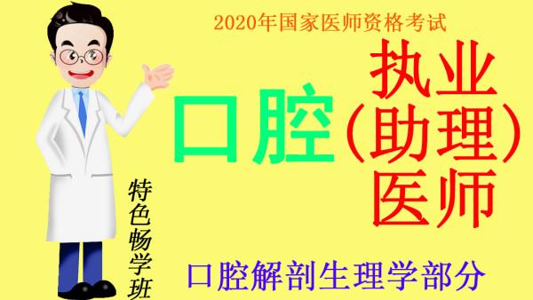 2020年国家医师资格考试口腔执业(助理)医师口腔解剖生理学部分