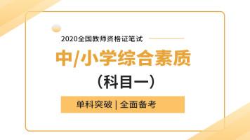 2020全国教资笔试综合素质(中小学通用)