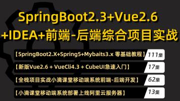 20年新版springboot 2.3教程spring5/mybatis/vue/cubeui项目实战