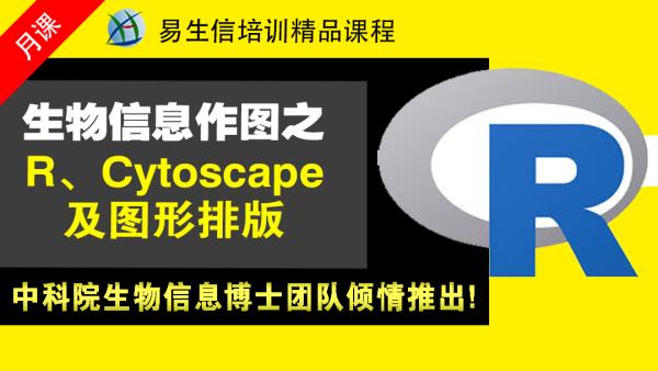 生信编程作图系列R、Cytoscape、AI使用 (生物信息学)
