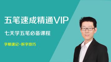 五笔速成精通VIP班 七天学五笔 五笔输入法速成 【Office微课】