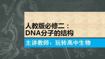 高中生物:DNA的分子结构
