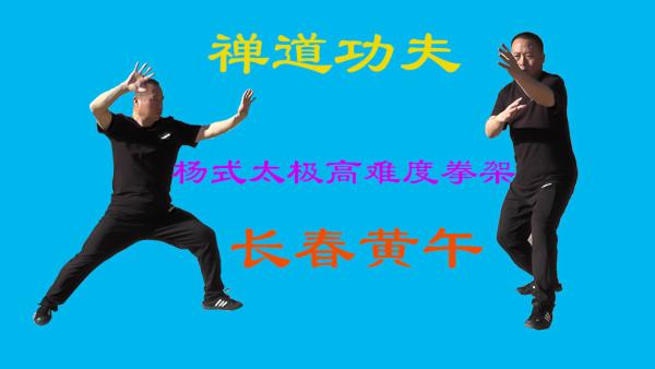 85式108式高难度拳架(传统杨氏太极拳)
