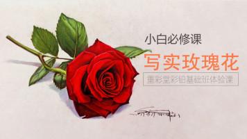 写实彩铅花卉篇—红玫瑰【重彩堂教育】