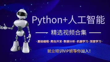 python+AI VIP体验视频