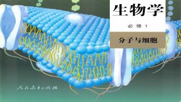 高中生物必修1《分子与细胞》基础精讲