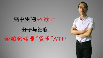 细胞的能量货币ATP,高中生物必修1第5章第2节,2019版新教材