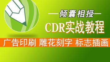 CDR包装设计、LOGO设计、字体设计、色彩平面设计零基础入门教程