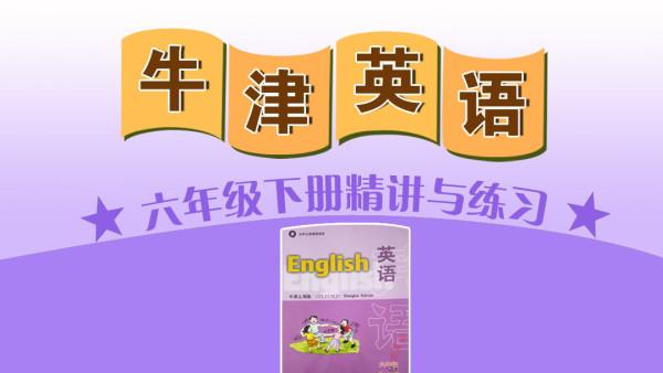 【牛津版】上海六年级下册(第二学期)英语教材知识点精讲与练习