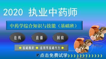 执业药师【2020中药学综合知识与技能】基础班