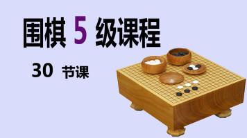 高目老师  围棋5级课程