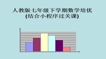 人教版七年级下学期数学1对1培优结合小程序过关课辅导(已定)