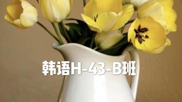 韩语H-43-B班