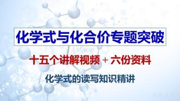 化学式与化合价专题突破(化学式的读写)初三化学-九年级化学