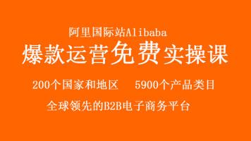 跨境电商阿里国际站Alibaba全球B2B贸易触手可及【优梯跨境】