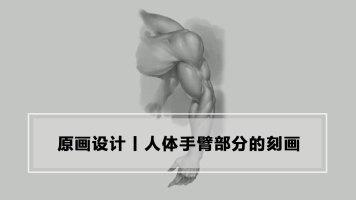 人体手臂部分的刻画丨原画插画丨绘画教程丨王氏教育集团