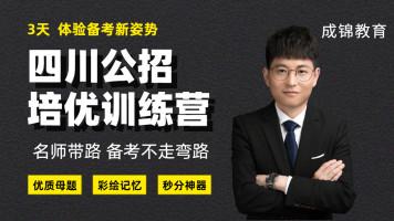 四川教师公招考试-三天培优训练营