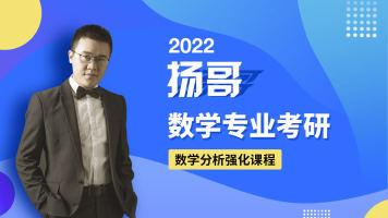 扬哥2022考研数学分析强化课程