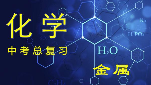 中考冲刺 化学 真题分类专项训练 0708 金属