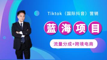 2021年Tiktok(蓝海项目)入门到开通收益、到Tiktok抖音营销