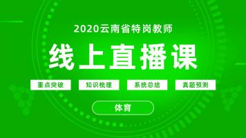 2020年云南省特岗教师直播课-体育