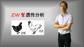 题型:ZW型遗传分析,伴性遗传,高中生物微课