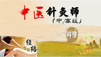 中医针灸师 中国中医科学院培训中心针灸师精品班针灸推拿