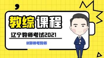 辽宁教师考试教综课程
