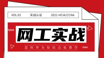 2021最新版HCIA/CCNA精品实战课之NAT-下-链路聚合