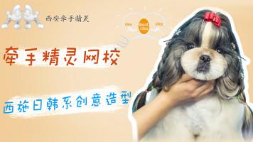 宠物美容西施日韩系创意头部