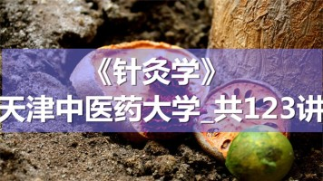 K8740_《针灸学》_天津中医药大学_共123讲