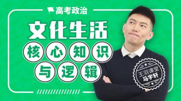 文化生活核心知识与逻辑-马宇轩高考政治