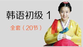 文聪网课 韩语 初级1(第一册)20节课视频课程
