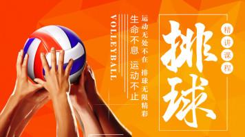 排球运动从入门到精通  排球技术与战术训练技能实战全套系统教程