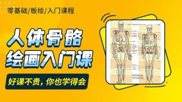 人体骨骼绘画入门课