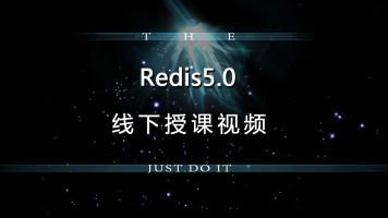 Redis5完整课程体系 数据类型 持久化 主从复制 事务管理 Jedis