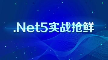.Net5 抢鲜实战【源码加微信zhaoxi005】