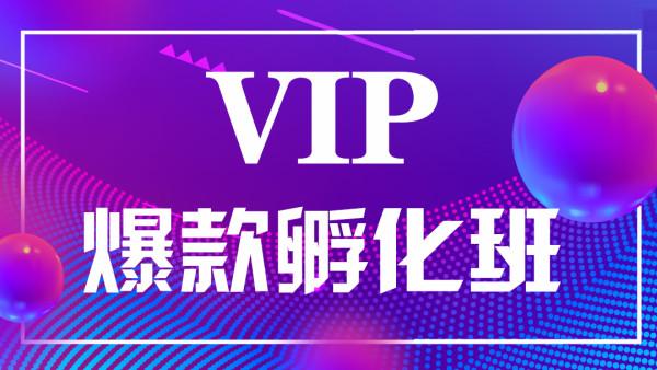 VIP 零基础打造爆款运营核心课【宇娃娃电商】