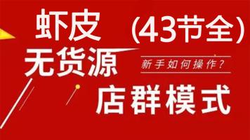 2020年淘刻shopee虾皮无货源店群系列课