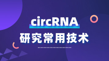 circRNA研究常用技术