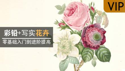 彩铅手绘花卉/水果/植物/静物 零基础课程 系统学画画手绘