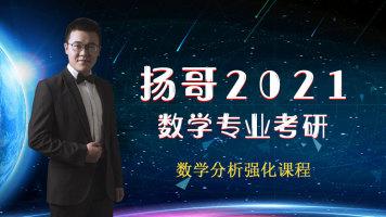 扬哥2021考研数学分析强化课程