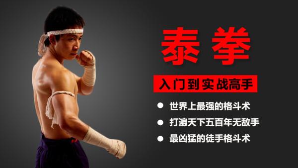 五百年无敌手  最凶狠的格斗术  泰拳零基础全套系统教程