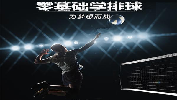 零基础入门自学排球视频教程学打排球技术与训练技法