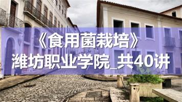K8560_《食用菌栽培》_潍坊职业学院_共40讲